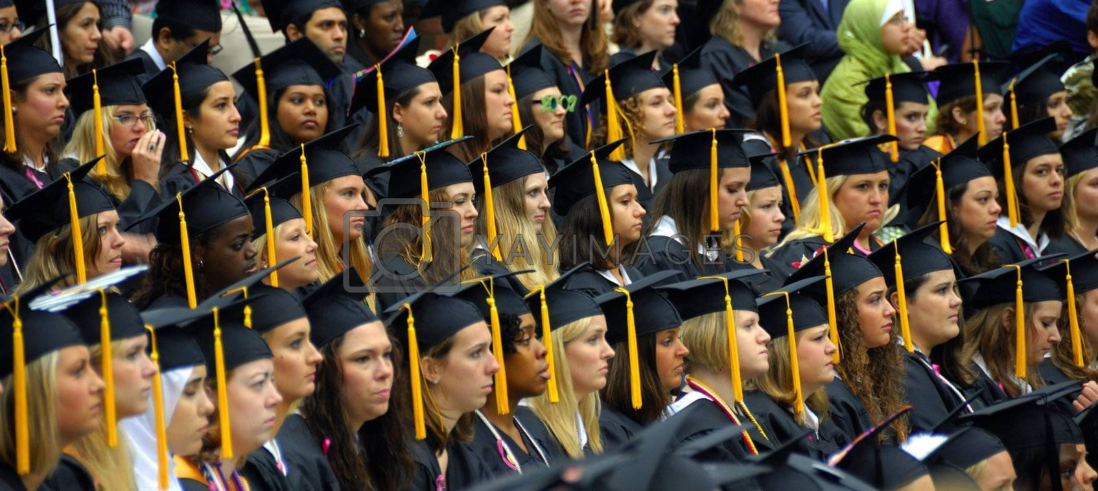 A row of womens graaduating in with some male graduates