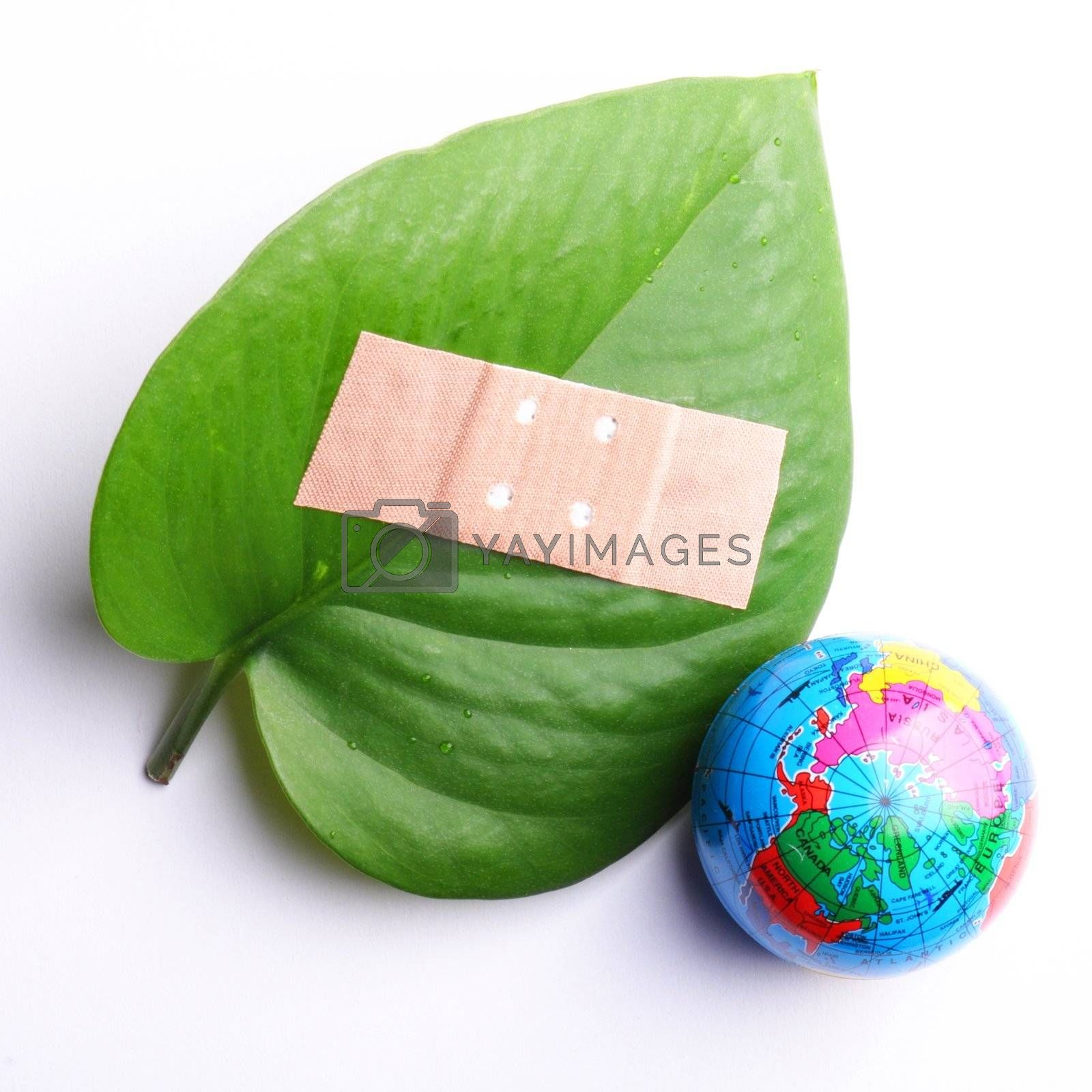 eco ecology ecological nature or environmental concept with green leaf and band aid on white