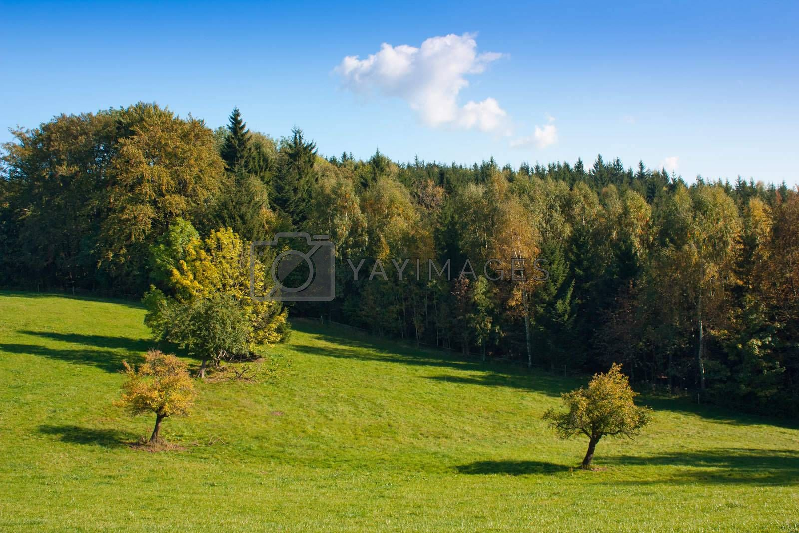 Countryside landscape in Northern Bohemia - Czech Republic