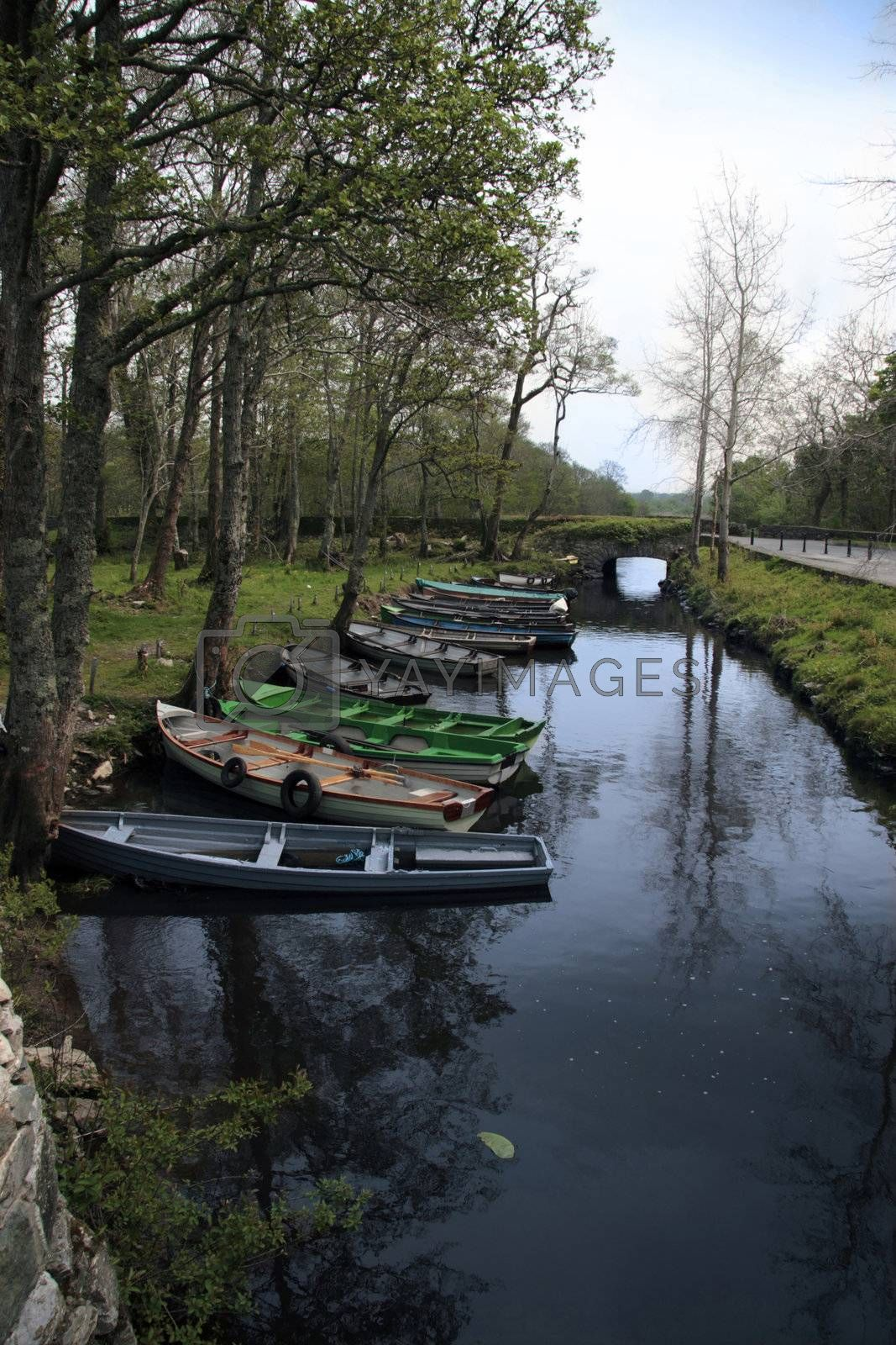 a row of rowing boats