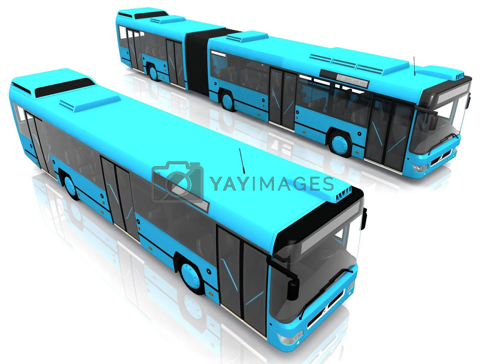 two blue city bus on white background