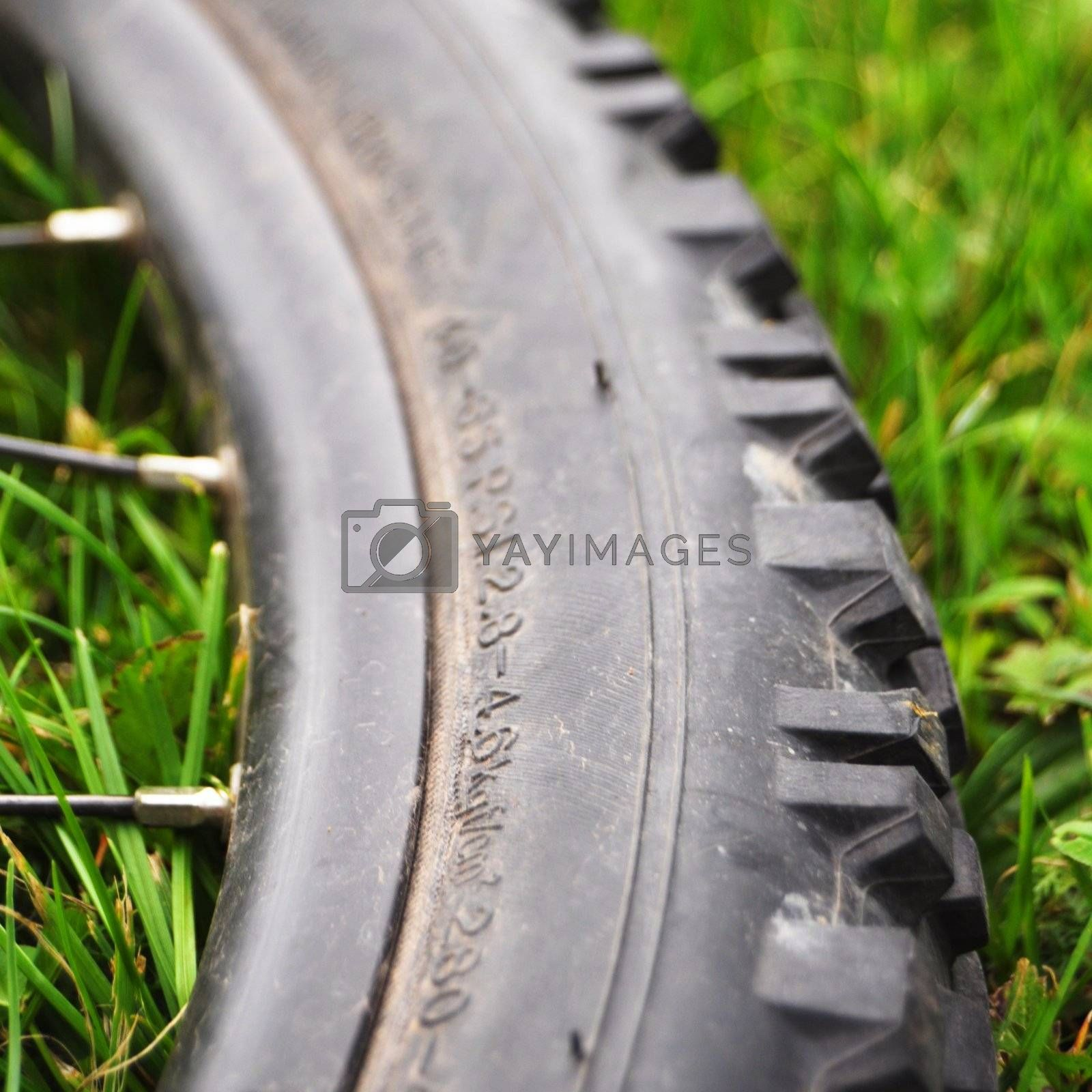 Royalty free image of mountain bike by gunnar3000