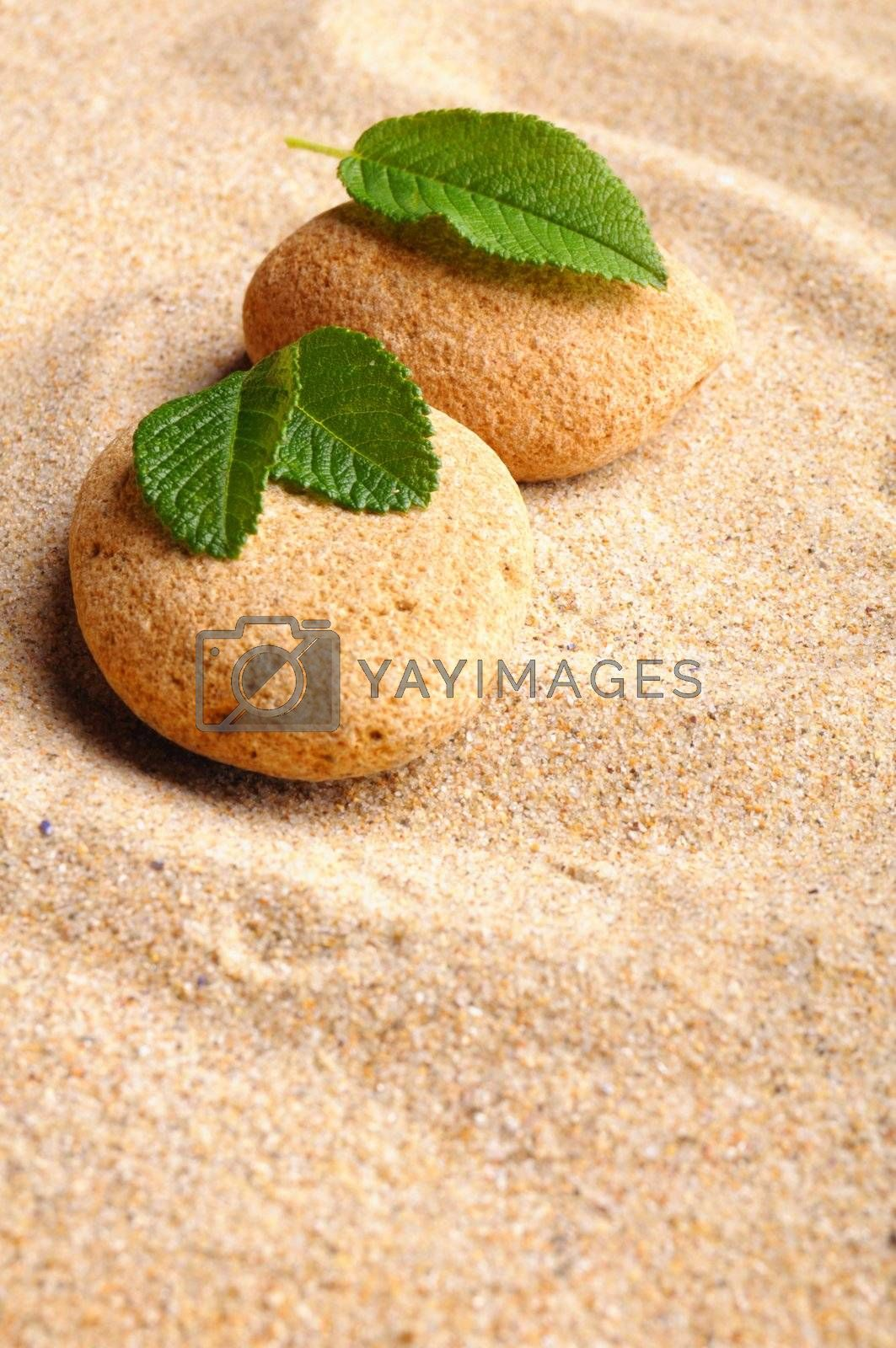 zen stone garden and leaf on sand showing spa concept