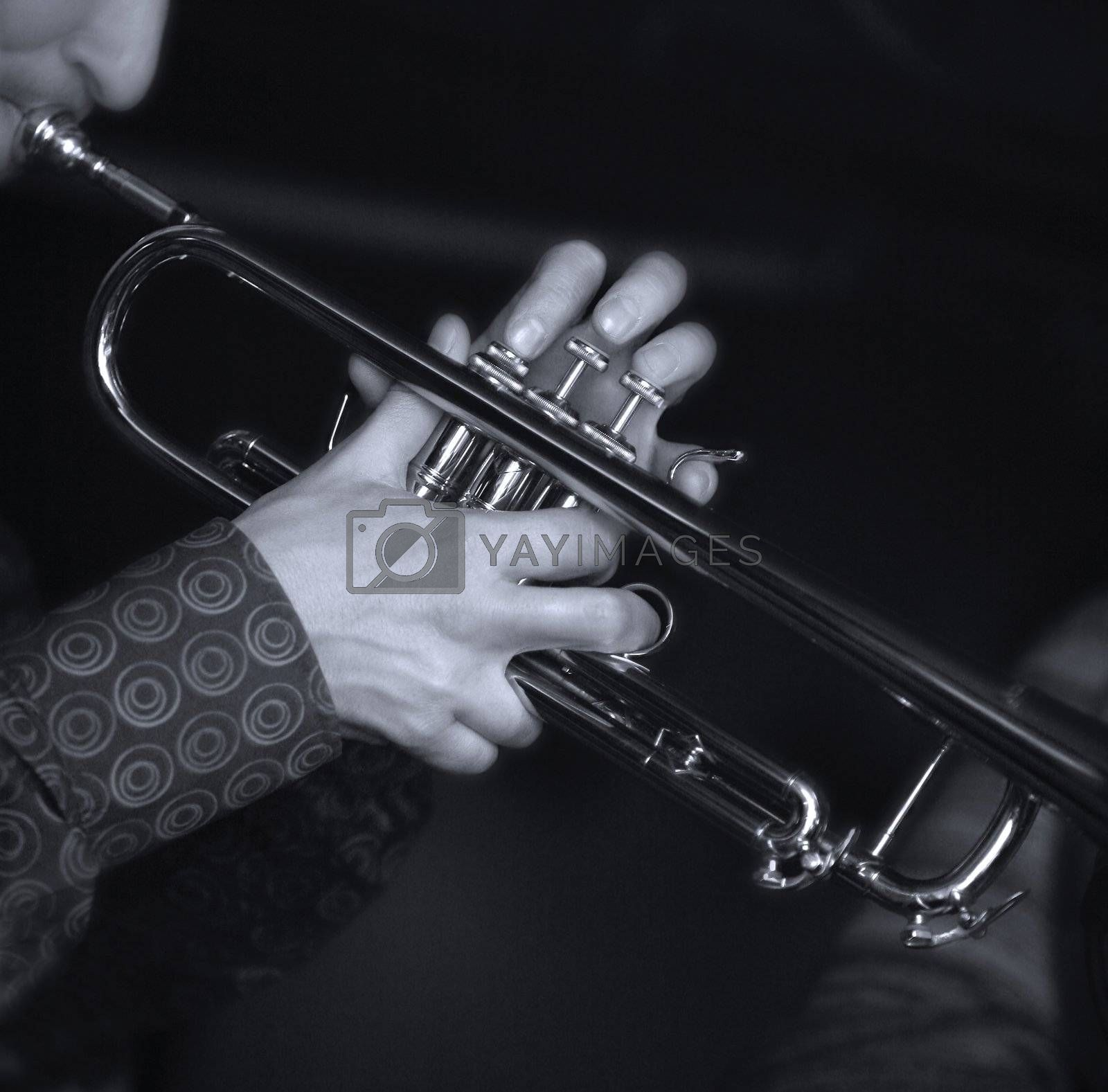 Trumpet player by friday