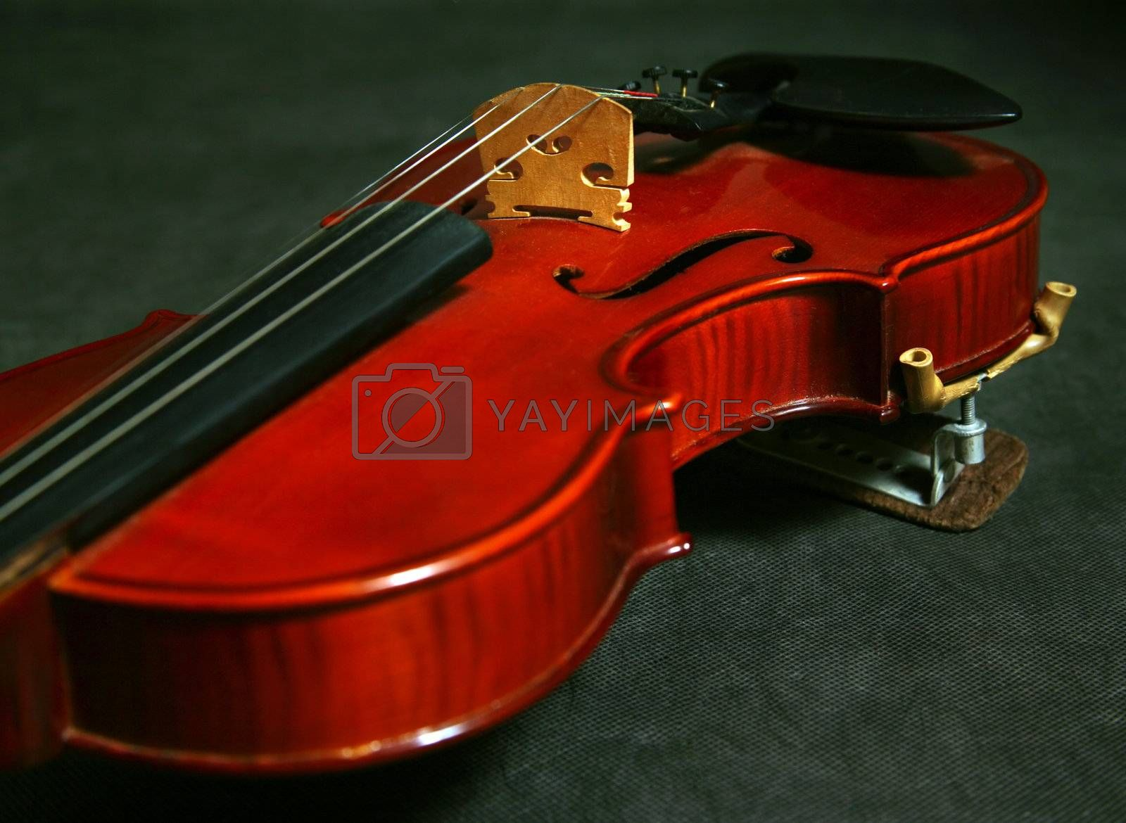 Violin by friday