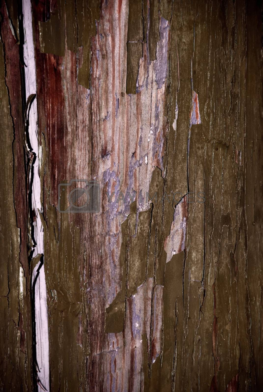 Natural old grunge wooden background stock photo image