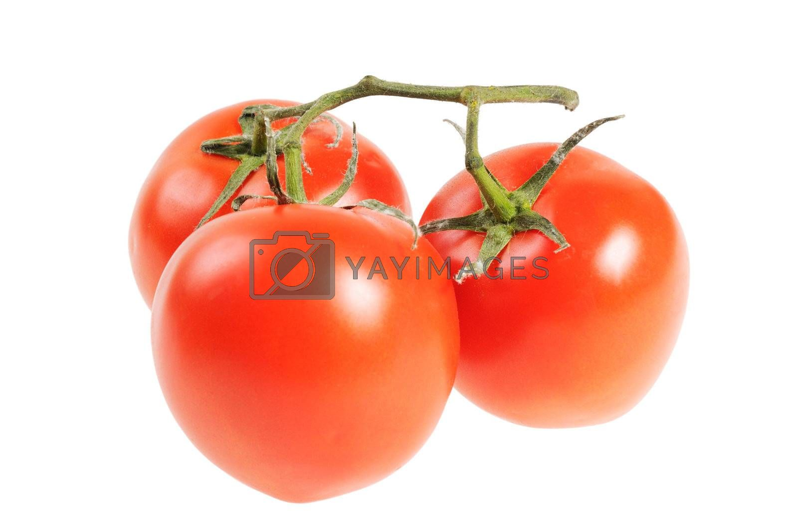 Bunch of three tomatoes on a white background.