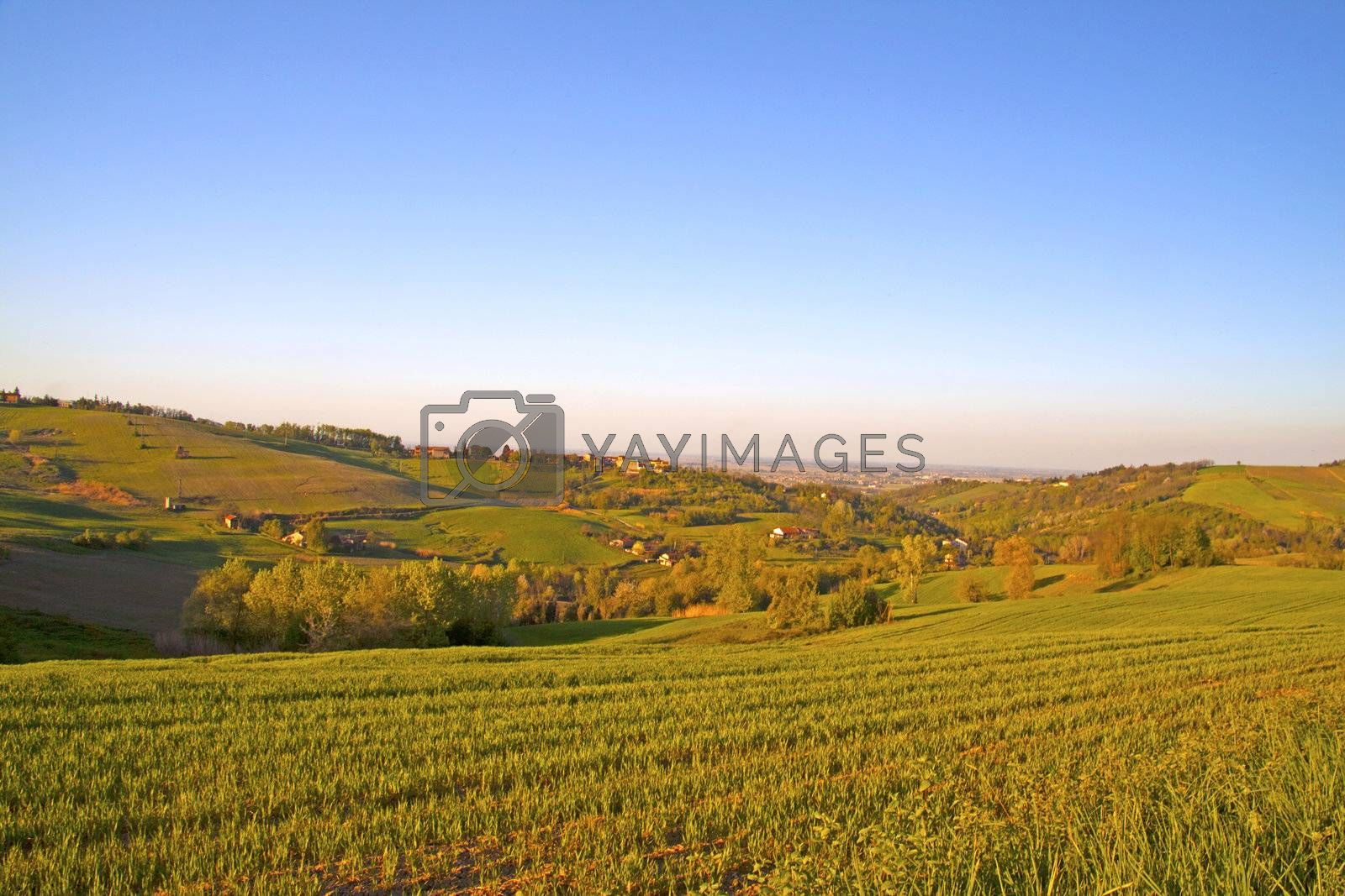 Landscape of country with fields at the sunset