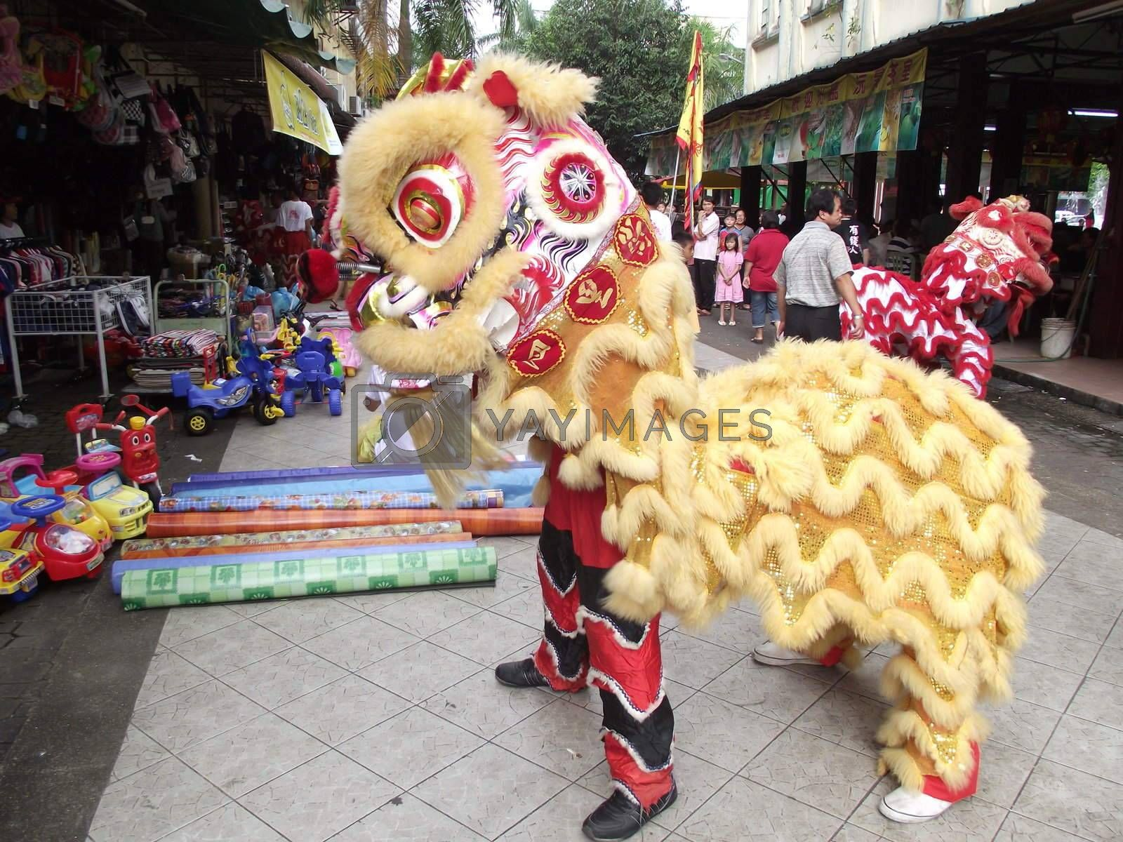 Lion Dance by DavidGJT
