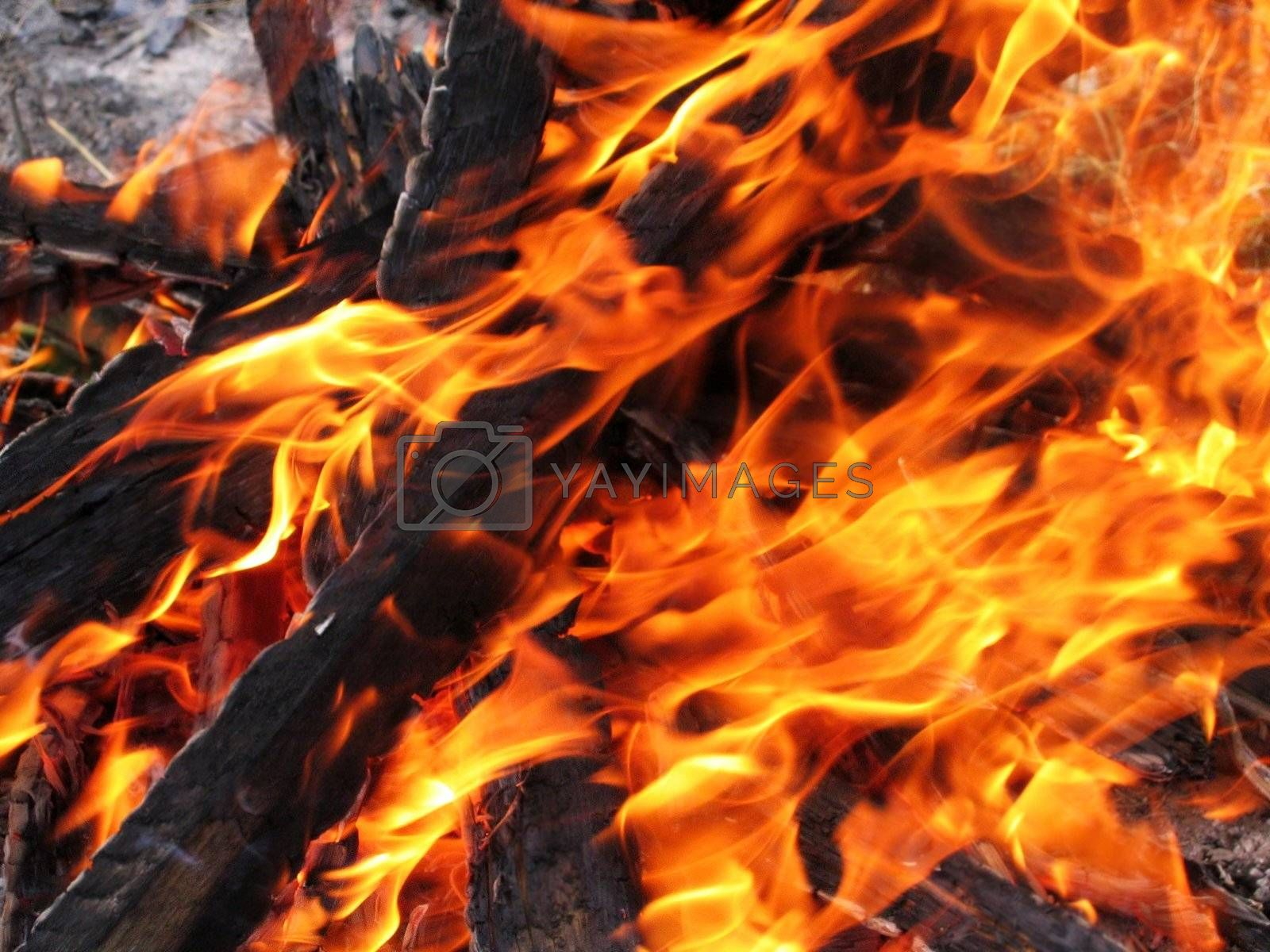 close-up of bright and hot fire