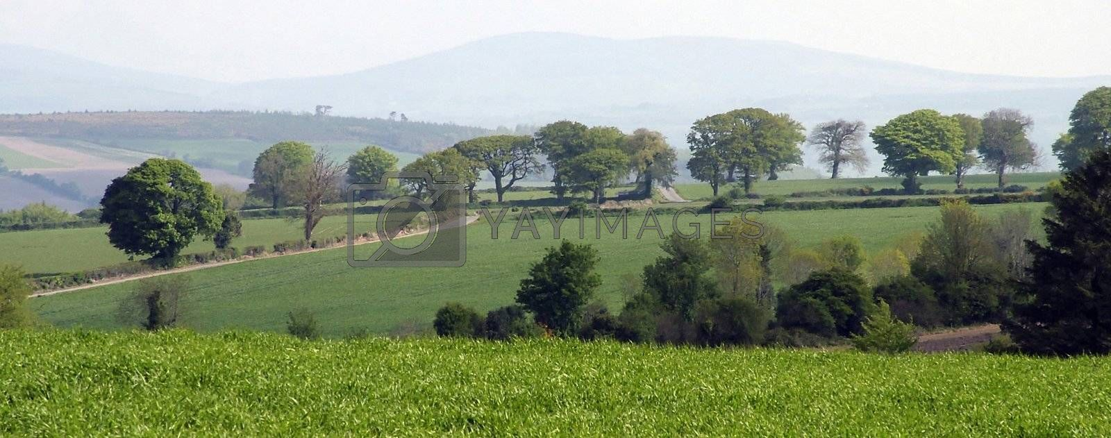 scenic view of county waterford