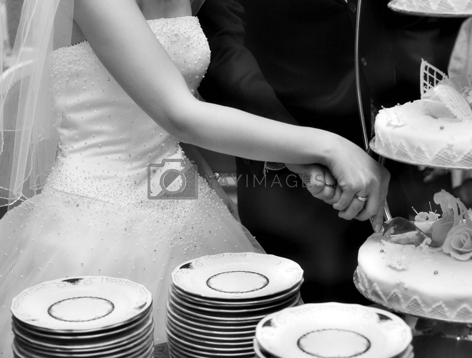The groom and the bride cut a wedding pie