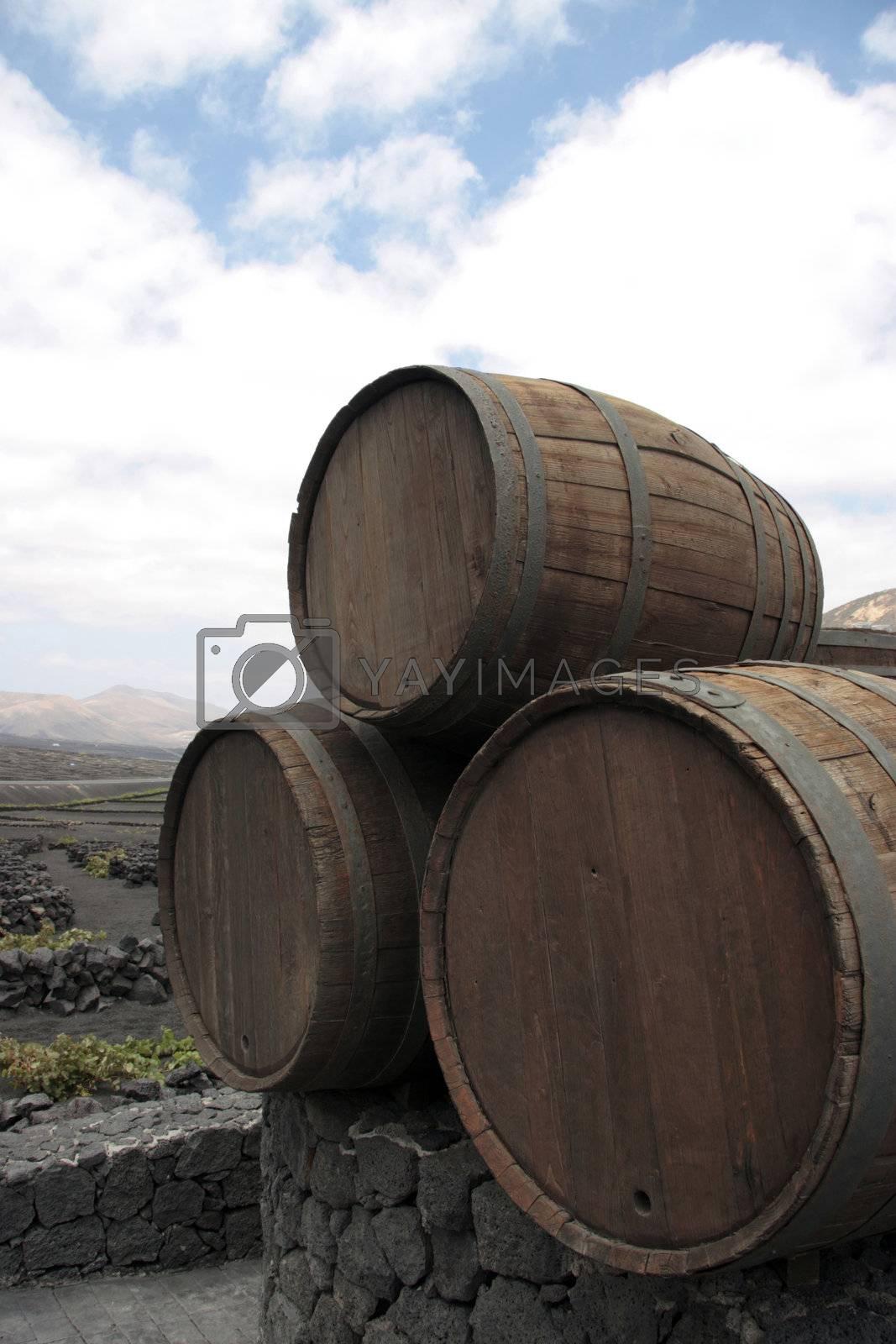 three barrels iii by morrbyte