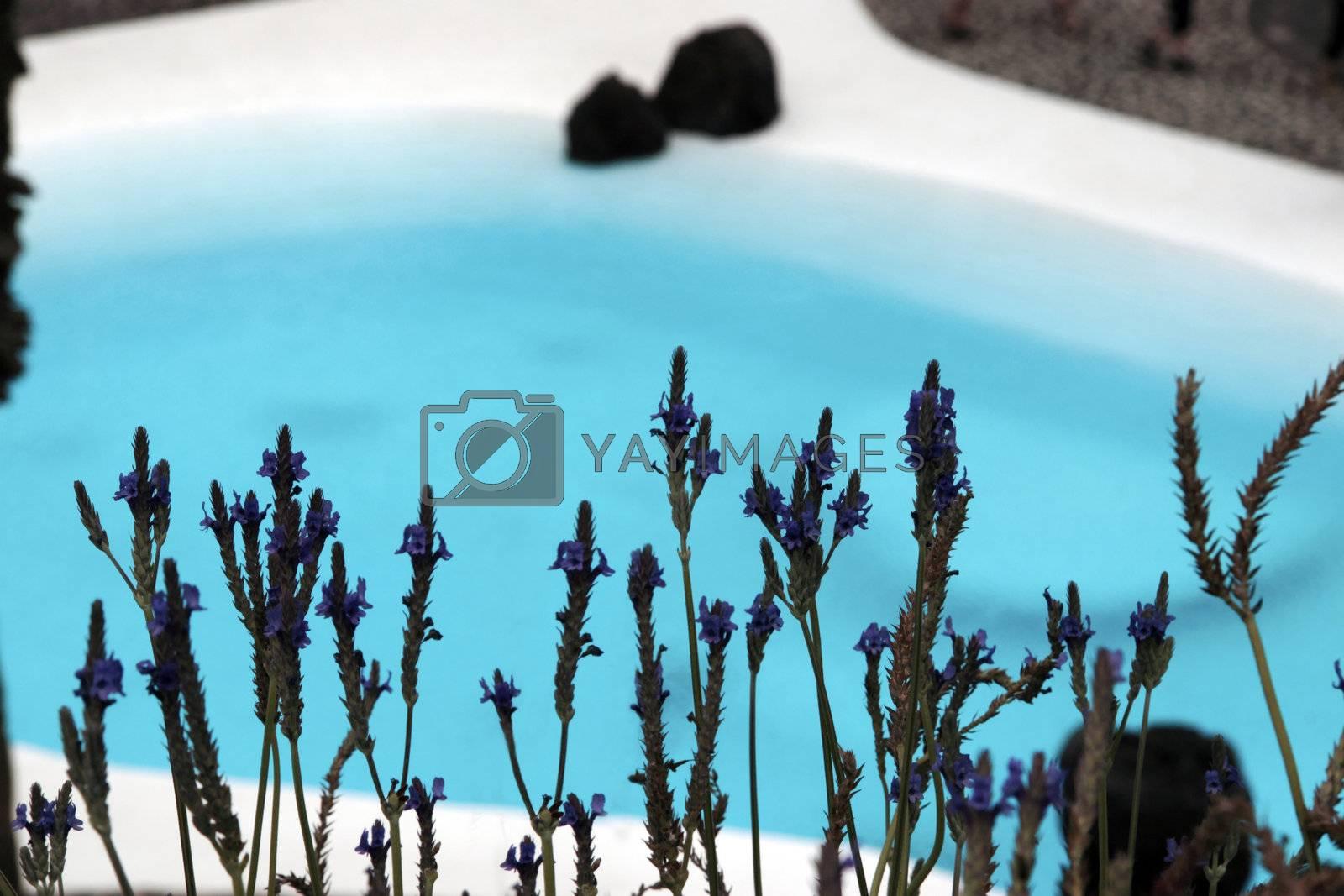 blue lagoon by morrbyte