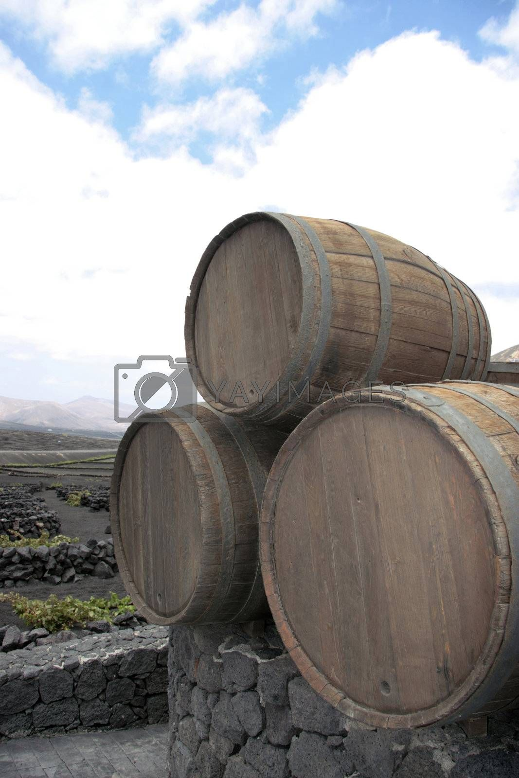 three barrels ii by morrbyte