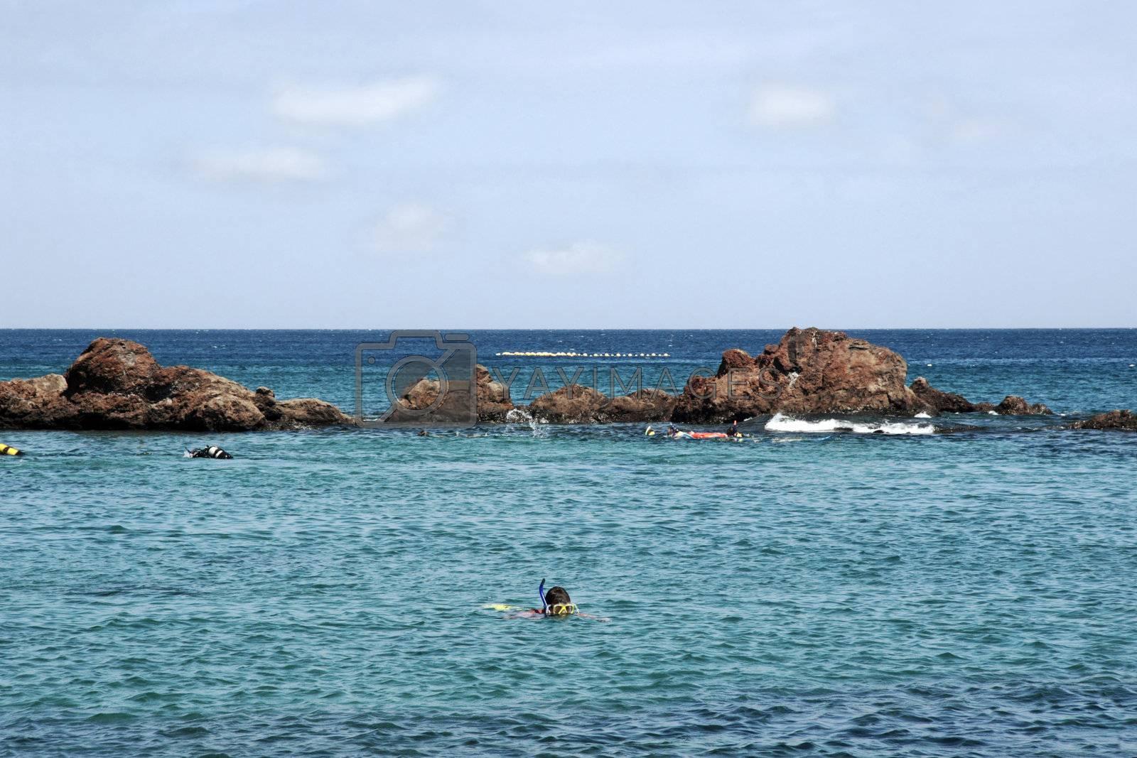 scuba divers by morrbyte