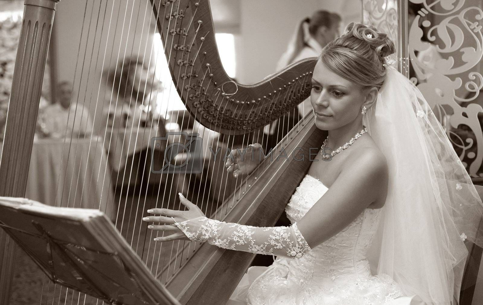 The bride plays on a string musical instrument