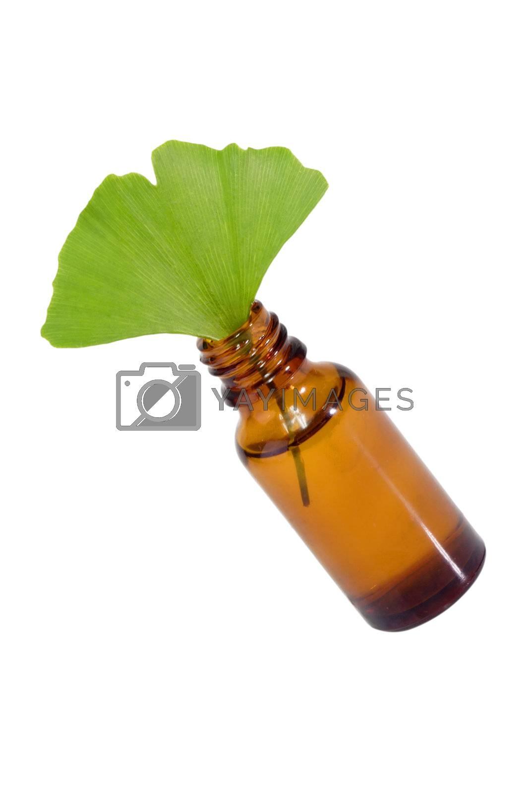 Fresh Ginkgo Biloba leaf with a brown medicine bottle.