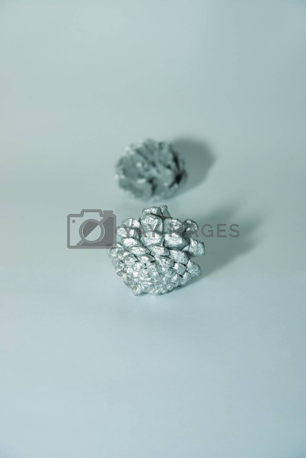 a  blue and silver christmas decorations seed
