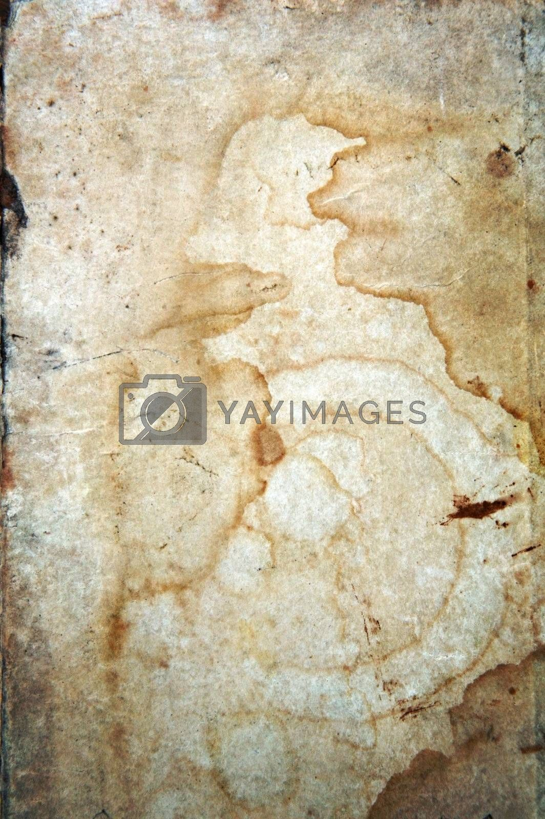 Old ancient book cover - parchment paper texture background