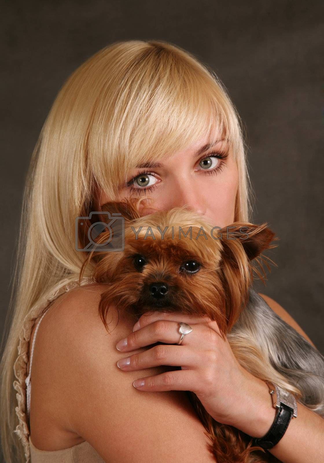 The girl holds the puppy of the yorkshire terrier