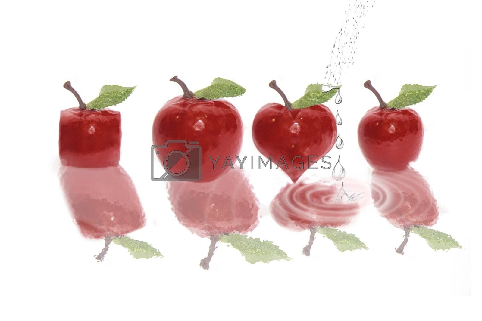 apples in various shapes on a water bed