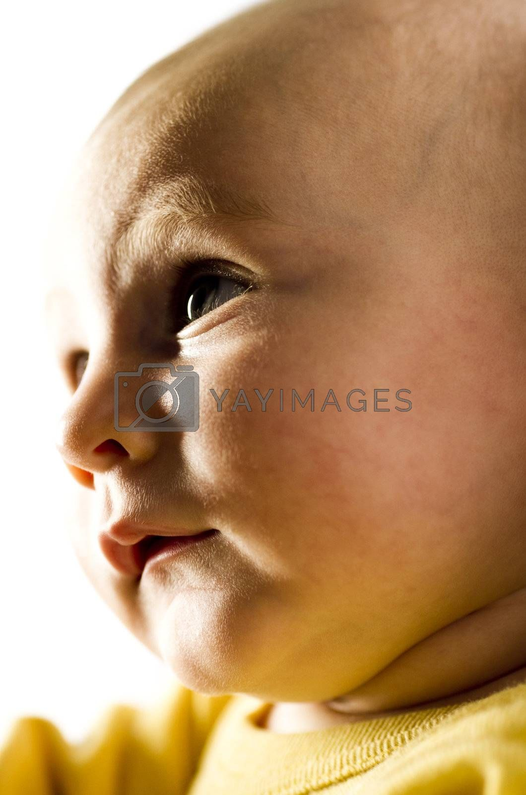 young child looking to the left in dramatic light