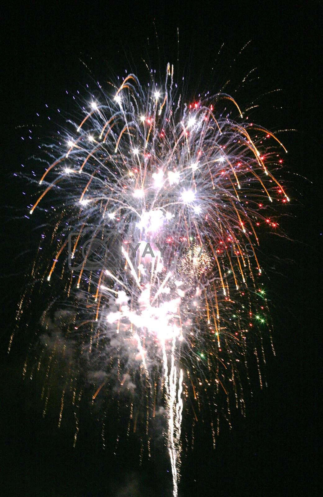 Fireworks display over the night sky.