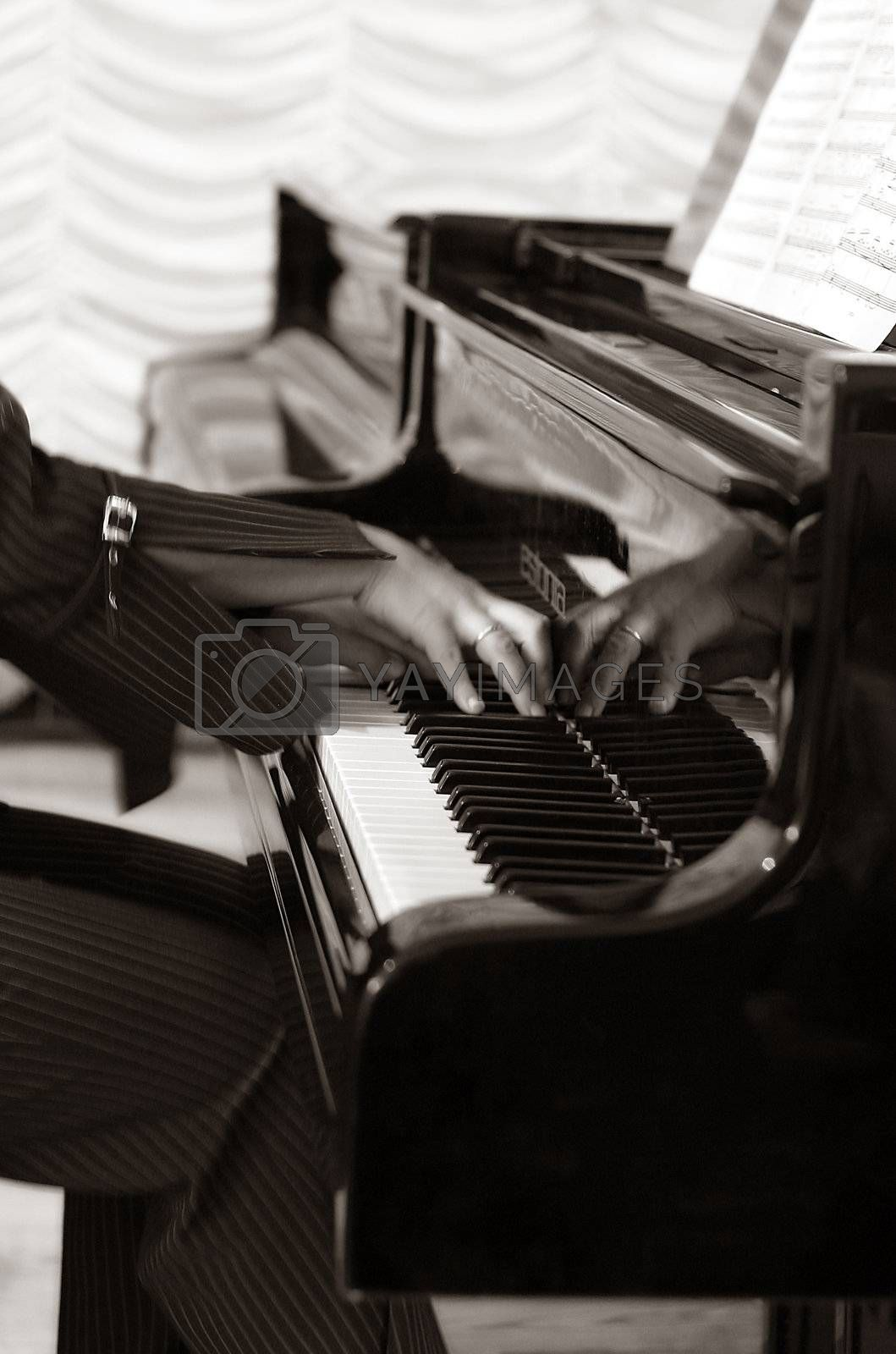 Female hands and the piano