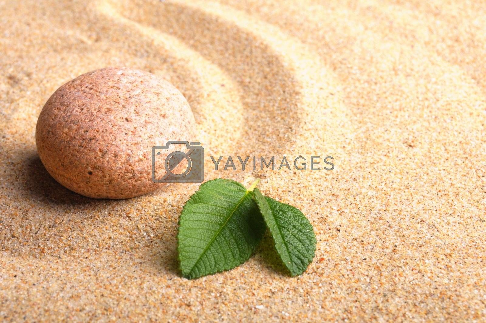 zen or spa concept with stone leaf and sand