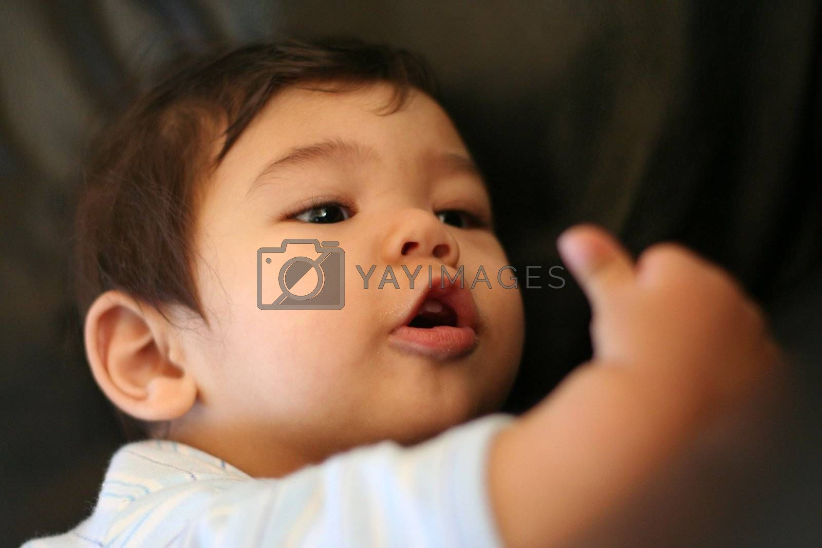 Baby interested in his fist