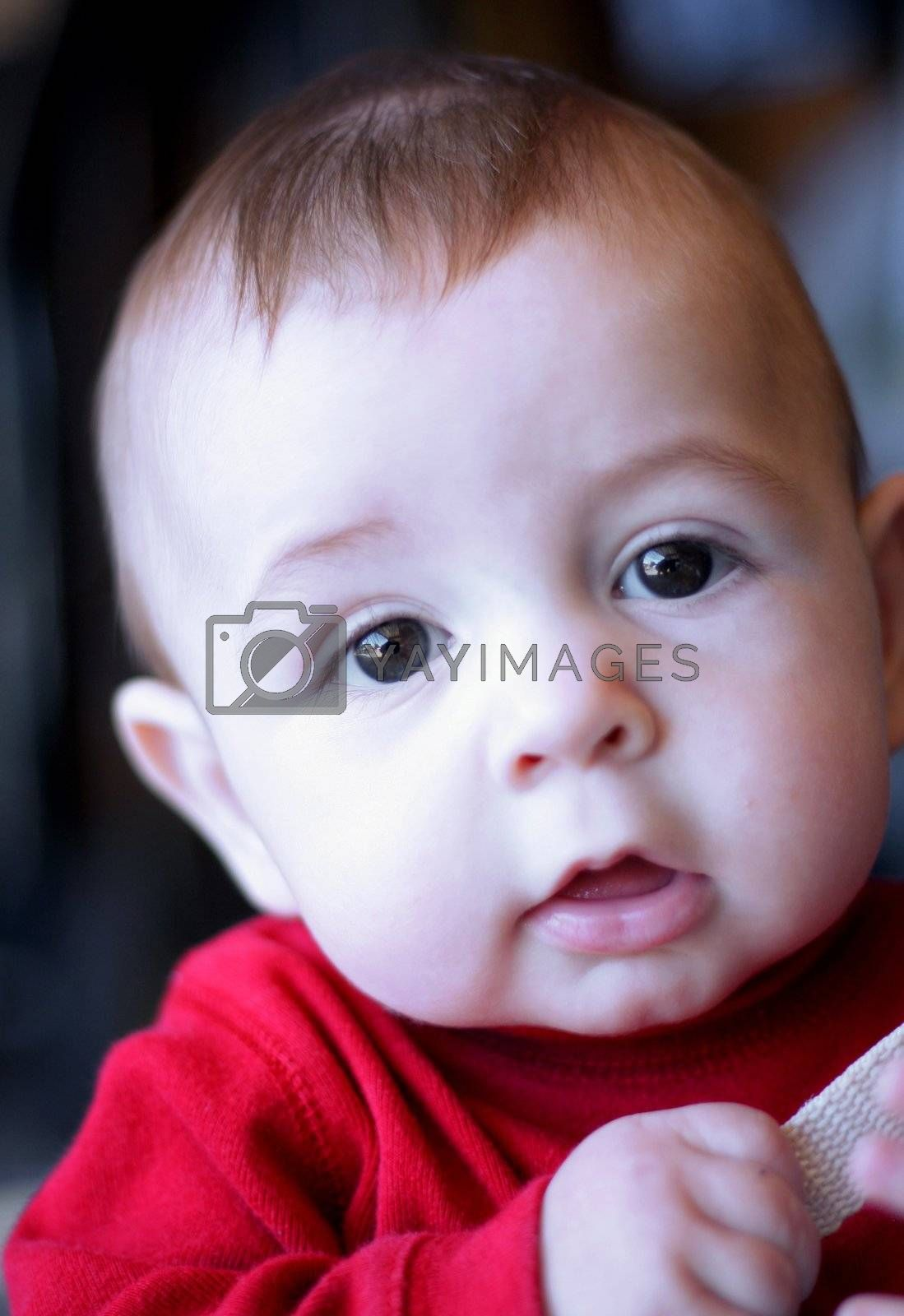 Adorable six month old baby boy looking intently at camera.
