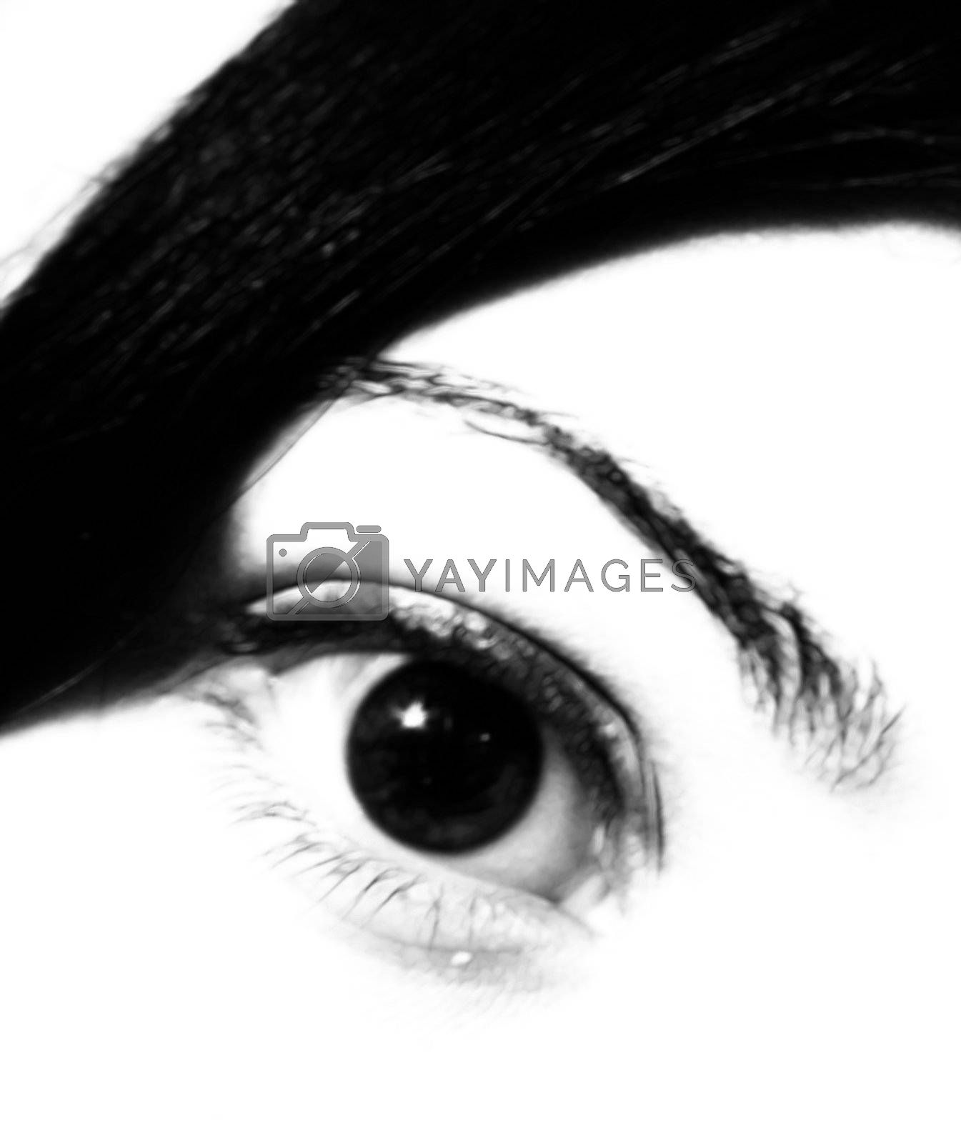 a soft, black and white eye of a pretty girl - looking right at you