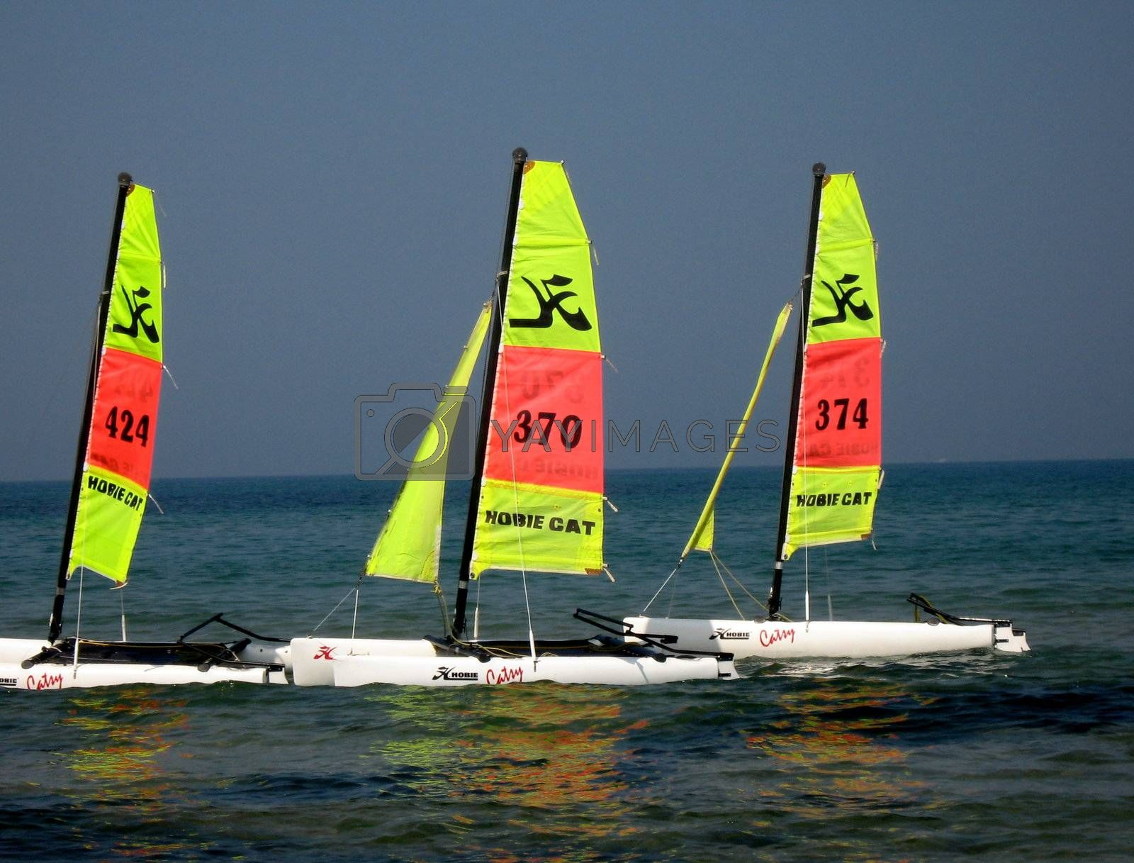 3 hobie cats in line, only lasted 3 seconds till wind changed
