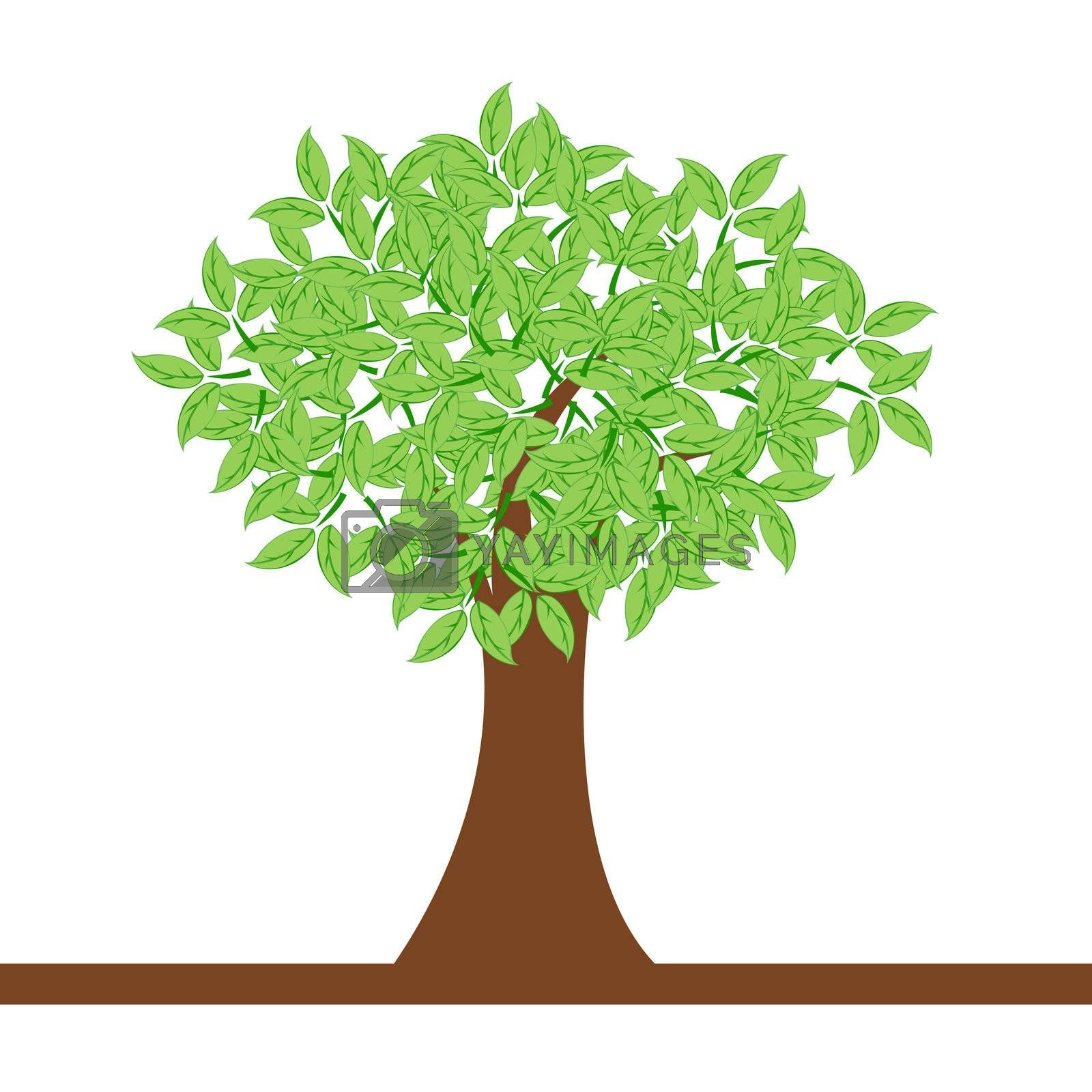 illustration of natural tree on white background