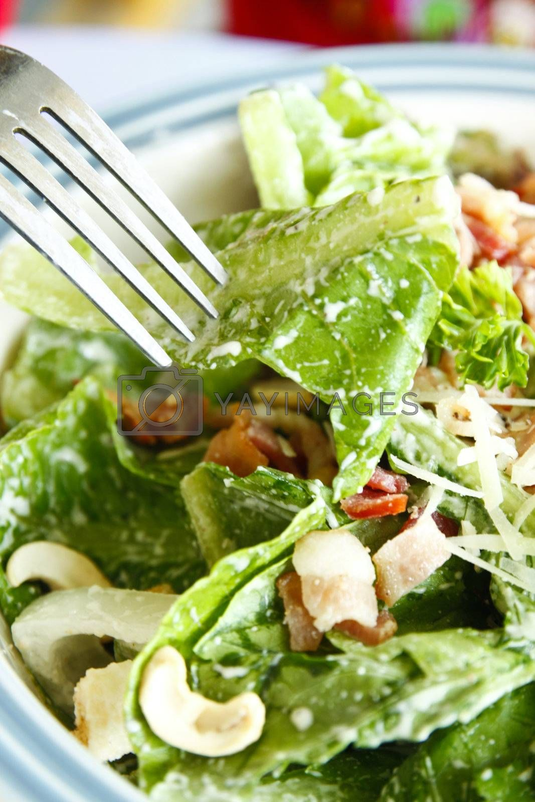 Delicious caesar salad with fork