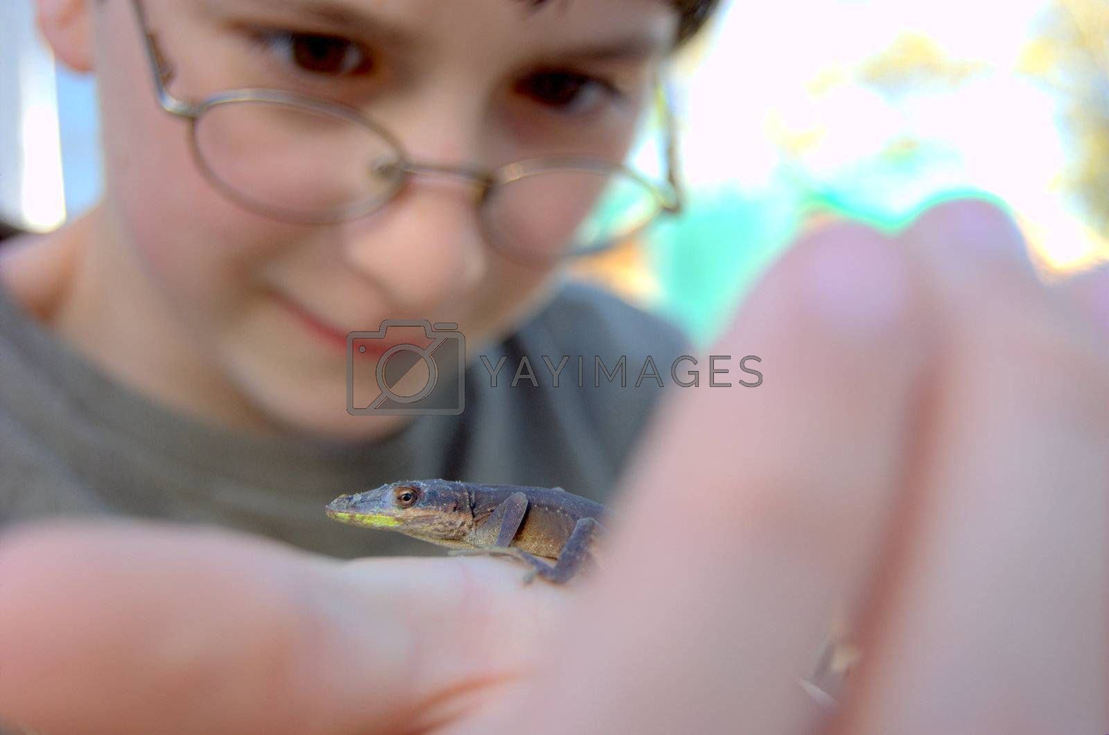 Boy holding lizard in his hand