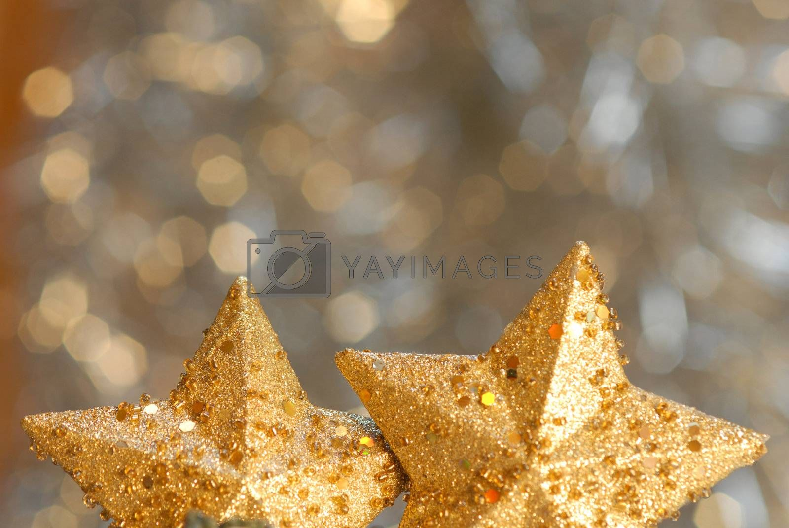 Christmas decoration two stars on a blurred background with copyspace