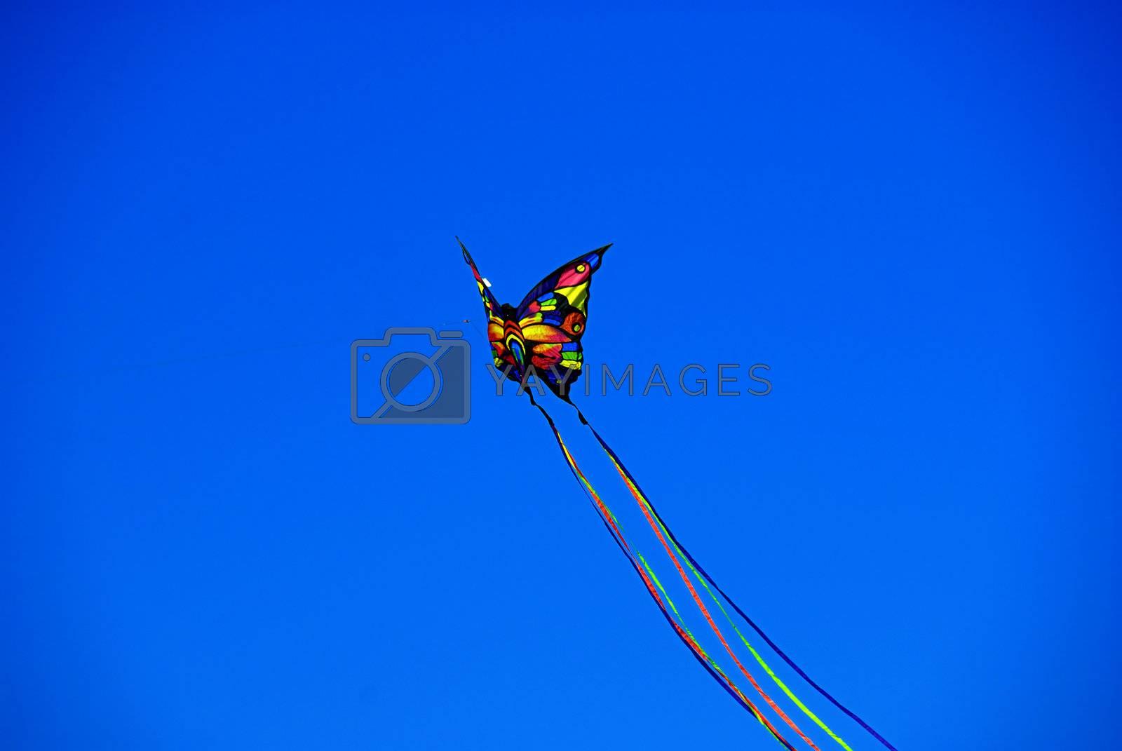 Butterfly Kite by pazham