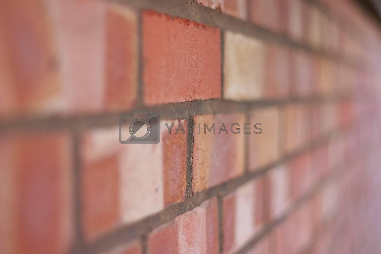 Brick Wall by hospitalera