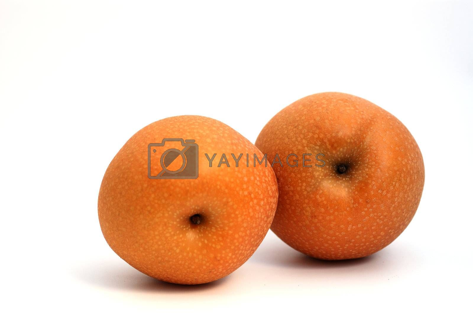 Two Japanese pears on white background