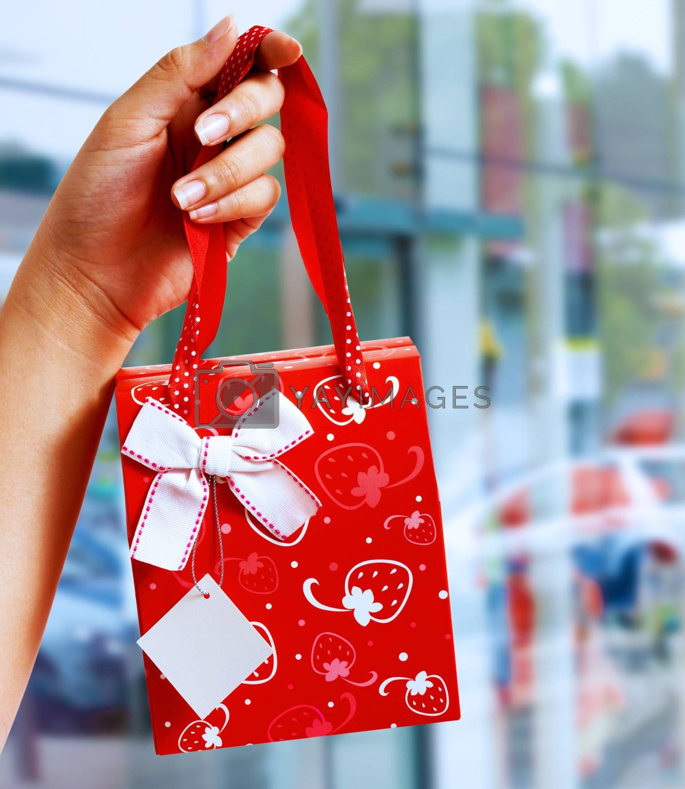 A Gift Wrapped Bag Being Held Up Outside A Shopping Mall