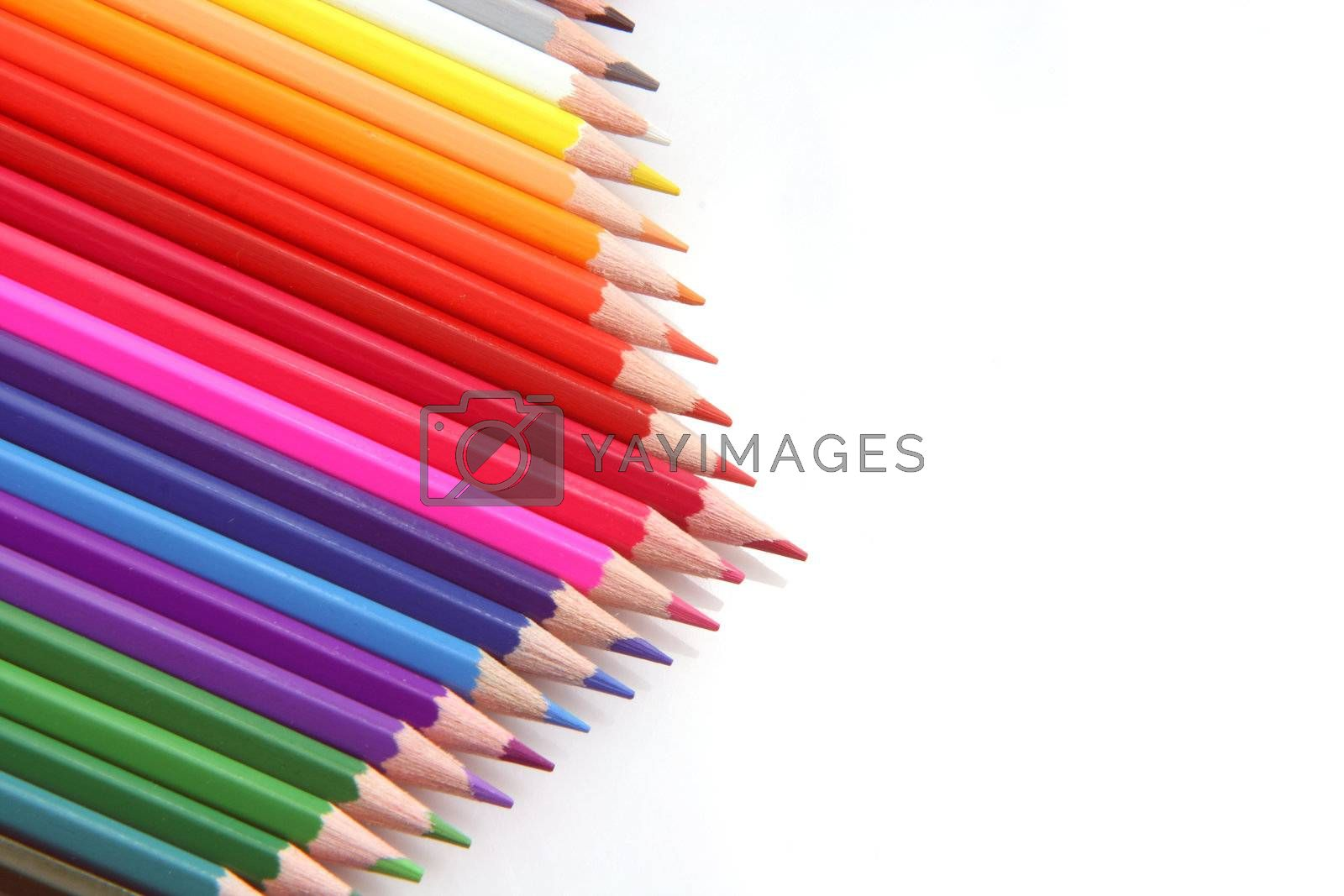 color pencils with copy-space isolated on white background