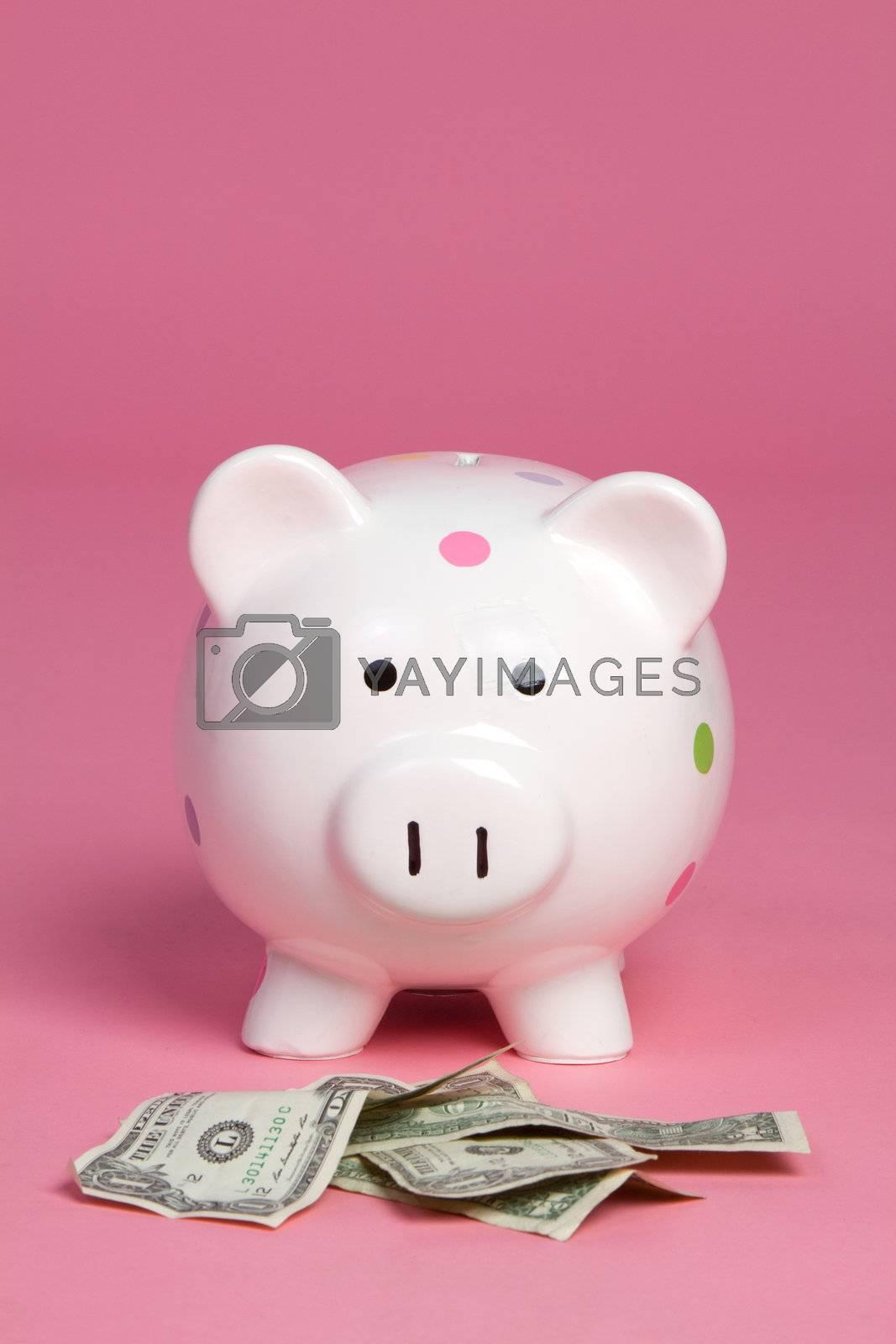 Money pig on pink background