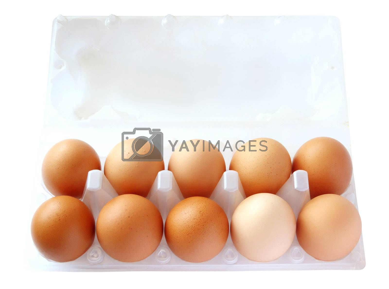 eggs in packing on the white background by aptyp_kok