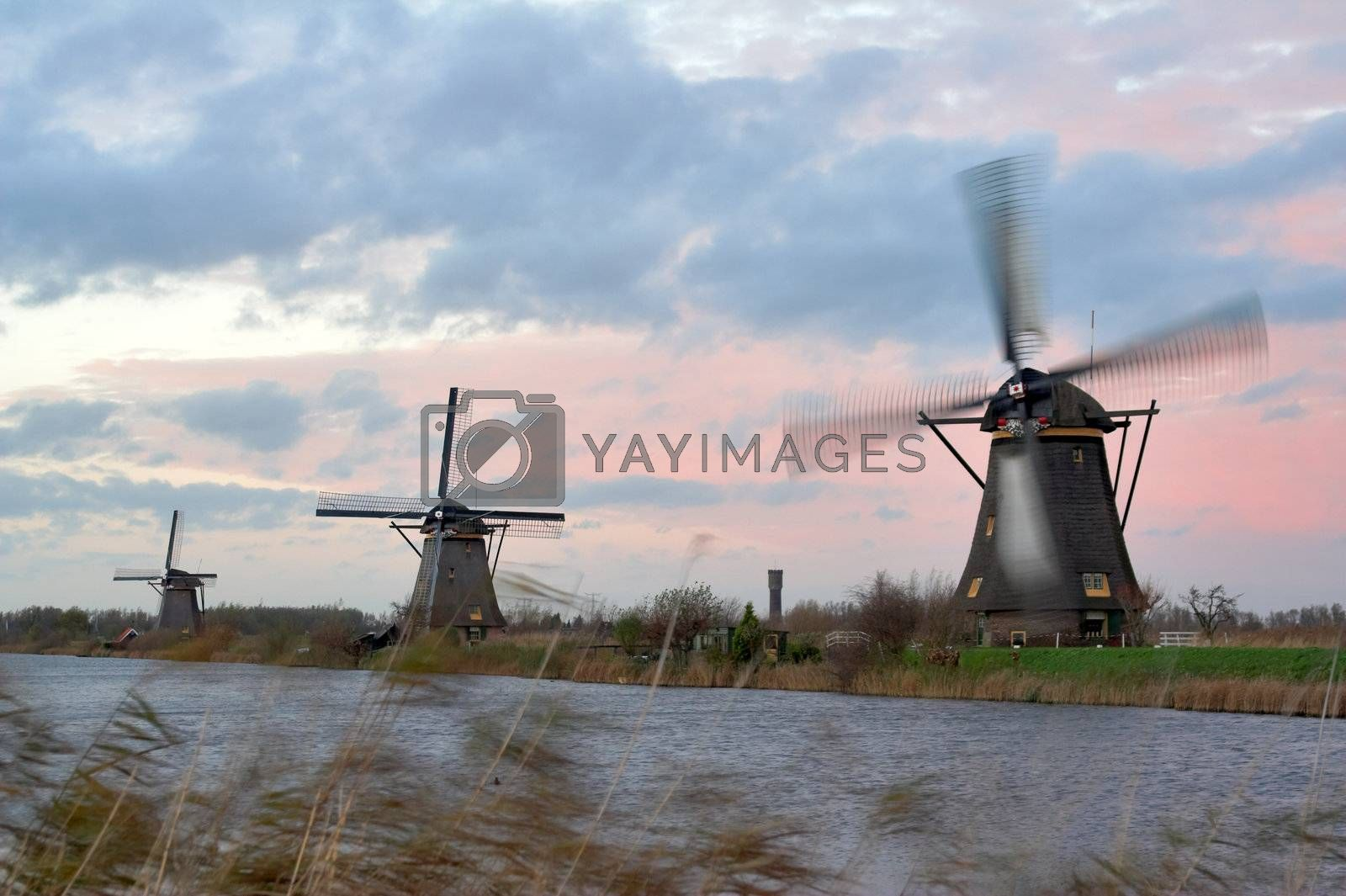 Windmills in sunset by MikLav
