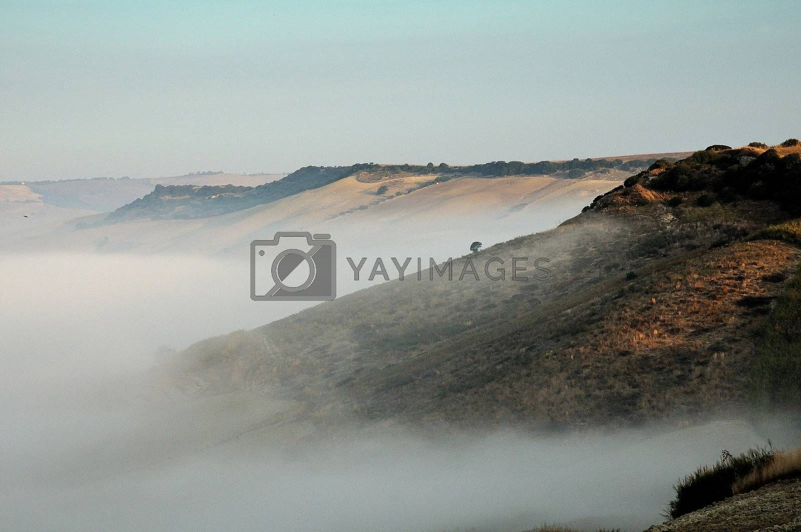 A foggy landscape in the countryside