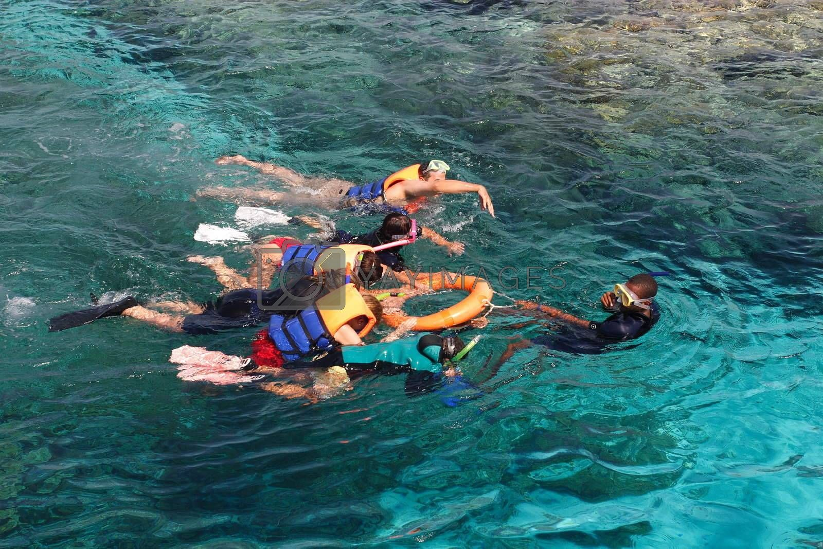 The group of people is engaged swimming in the sea with the instructor