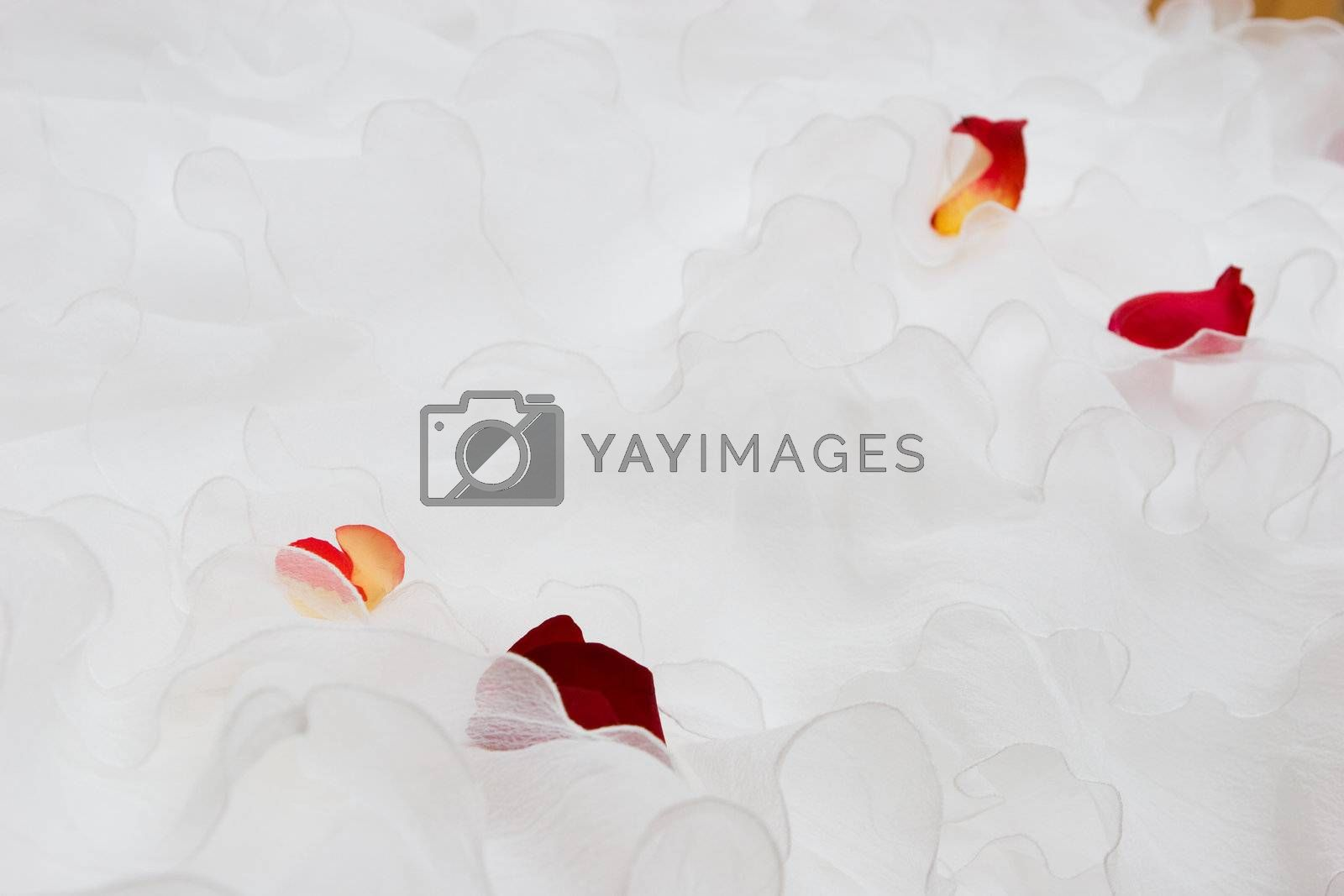 white dress with red petales of tulips and roses on it