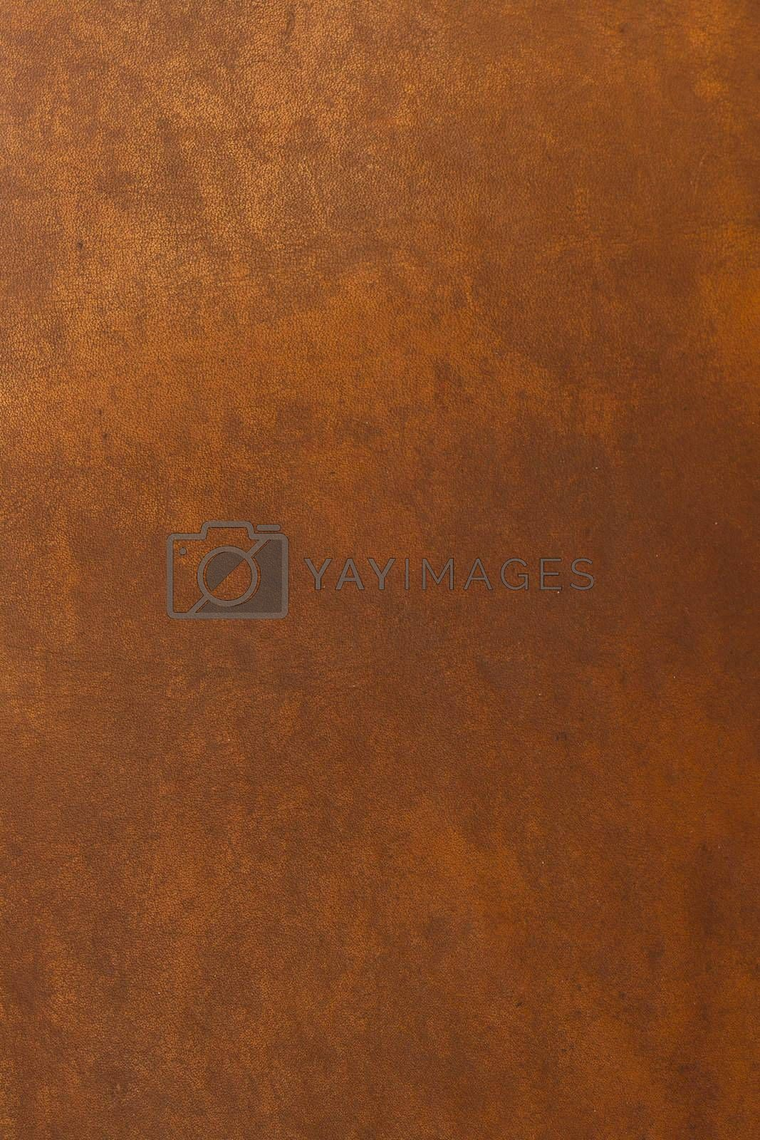 Close-up photograph of leather
